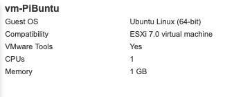 VM Tools Installed